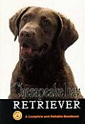 Chesapeake Bay Retriever A Complete & Reliable Handbook