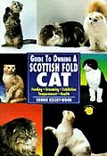 Guide To Owning A Scottish Fold Cat