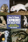 Guide To Owning Chipmunks & Similar Species