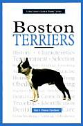 New Owners Guide To Boston Terriers