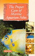 Proper Care Of Marine Aquarium Fishes