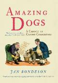 Amazing Dogs A Cabinet of Canine Curiosities