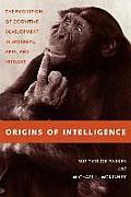 Origins of Intelligence: The Evolution of Cognitve Development in Monkeys, Apes, and Humans