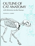 Pictorial Outline of Cat Anatomy