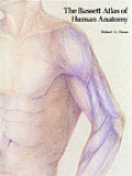 Bassett Atlas Of Human Anatomy