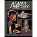 Human Anatomy 3rd Edition