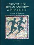 Essentials Of Human Anatomy & Physiology 4th Edition