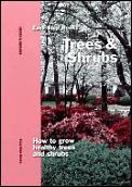 Trees & Shrubs How To Grow Healthy Trees