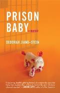 Prison Baby A Memoir