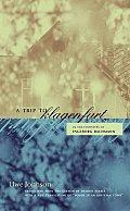 A Trip to Klagenfurt: In the Footsteps of Ingeborg Bachmann