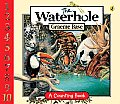 Water Hole Board Book