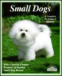 Small Dogs Dogs With Charm & Personality