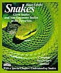 Snakes Giant Snakes & Nonvenomous Snakes