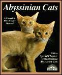 Abyssinian Cats Everything About Acqui