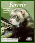 Ferrets Everything About Purchase Care N