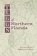 Trees Of Northern Florida