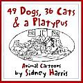49 Dogs 36 Cats & Platypus