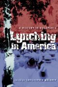 Lynching in America A History in Documents