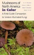 Mushrooms of North America in Color: A Field Guide Companion to Seldom-Illustrated Fungi