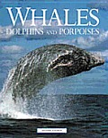 Whales Dolphins & Porpoises 2nd Edition