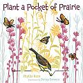 Plant a Pocket of Prairie
