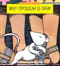 Why Opossum Is Gray A Story From Mexic