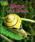 Slugs & Snails Minipets