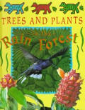 Trees & Plants In The Rain Forest P In T