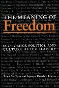 The Meaning Of Freedom: Economics, Politics, and Culture after Slavery