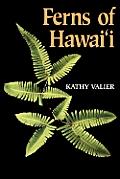 Ferns Of Hawaii