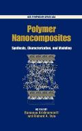 Polymer Nanocomposites Synthesis Characterization & Modeling