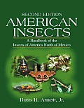 American Insects A Handbook of the Insects of America North of Mexico Second Edition