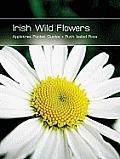 Irish Wild Flowers