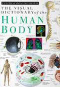Visual Dictionary Of The Human Body