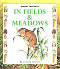 In Fields & Meadows Animal Trackers Ser