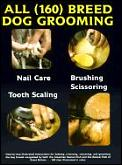 All Breed Dog Grooming