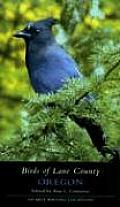 Birds Of Lane County Oregon