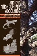 Ancient Pinon Juniper Woodlands A Natural History of Mesa Verde Country