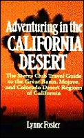 Adventuring In The California Desert