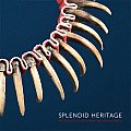 Splendid Heritage: Perspectives on American Indian Art