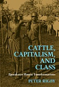 Cattle Capitalism & Class Ilparaku Maasa
