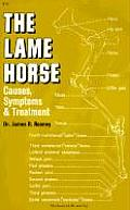 Lame Horse Causes Symptoms & Treatment