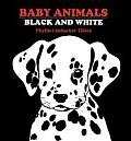 Baby Animals Black & White