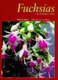 Fuchsias The Complete Guide
