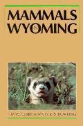 Mammals In Wyoming