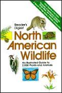 Readers Digest North American Wildlife