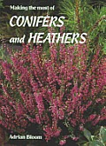 Making The Most Of Conifers & Heathers