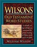 Wilsons Old Testament Word Studies Unabr