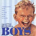 Little Big Book For Boys