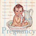 The Little Big Book of Pregnancy
